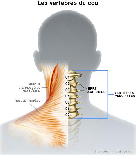 Pourquoi après le yogi fait mal le dos et le cou