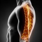 Dorsalgies : que faut-il savoir à propos de vos maux de dos ?