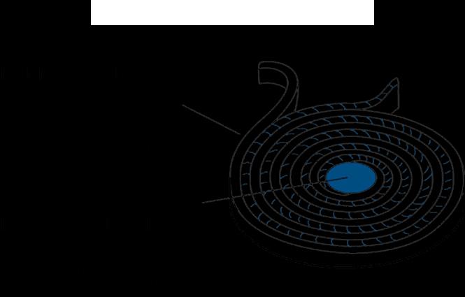 disque intervertébral Discopathie - Chiropratique Sillery