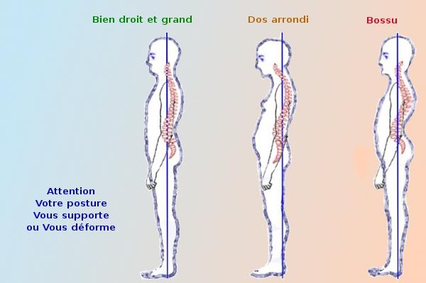 douleurs cotes gauche le dos