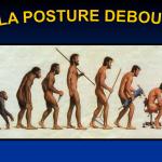 Mauvaises postures et Maux de dos