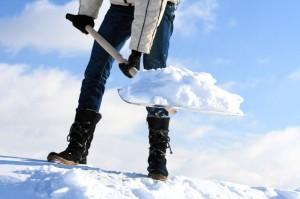 ASSOCIATION DES CHIROPRATICIENS DU QUÉBEC - Un hiver en santé