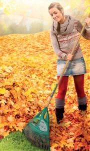 Ramassage de feuilles-4