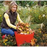 Ramassage de feuilles…gare aux blessures !