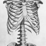 L'entorse lombaire : symptômes, causes, diagnostic et traitements