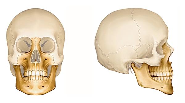 La douleur et le mal à la mâchoire - Clinique Chiropratique ...