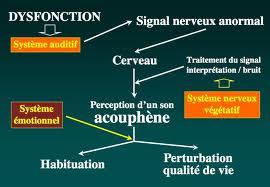 Acouphènes-3