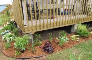 Travaux-patio-fleurs