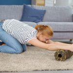 5 actions à faire à la maison pour maximiser les effets de votre traitement chiropratique